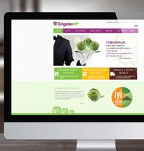 Enginarım Web Sitesi